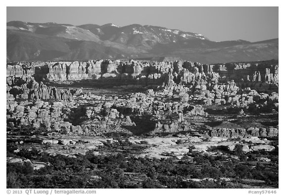 Needles seen from the Maze, late afternoon. Canyonlands National Park (black and white)