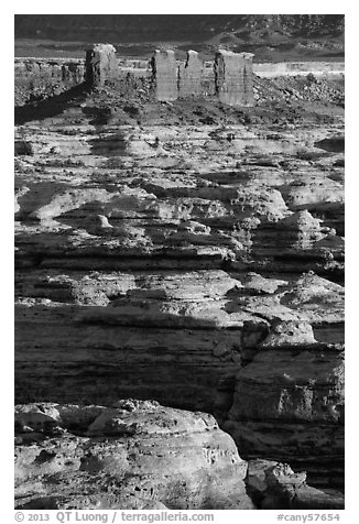 Maze canyons and Chocolate Drops. Canyonlands National Park (black and white)