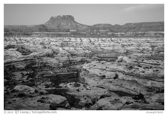 Maze and Chocolate Drops from Petes Mesa at dawn. Canyonlands National Park (black and white)