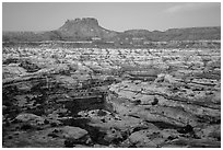Maze and Chocolate Drops from Petes Mesa at dawn. Canyonlands National Park ( black and white)