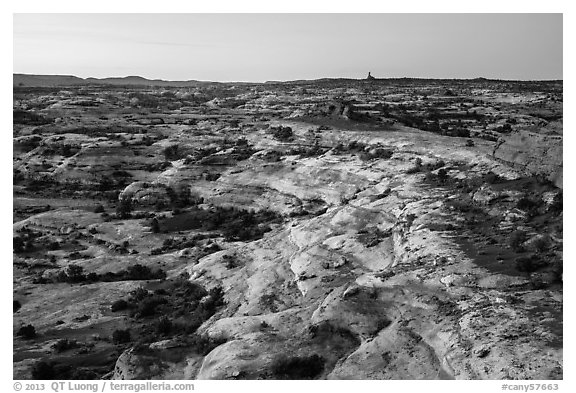 Jasper Canyon from Petes Mesa at dawn, Maze District. Canyonlands National Park (black and white)