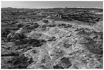Jasper Canyon from Petes Mesa at sunrise, Maze District. Canyonlands National Park, Utah, USA. (black and white)