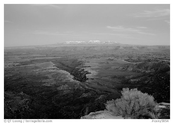 Side Gorge seen from Grand View Point, dusk, Island in the Sky. Canyonlands National Park (black and white)