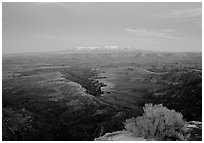 Side Gorge seen from Grand View Point, dusk, Island in the Sky. Canyonlands National Park ( black and white)