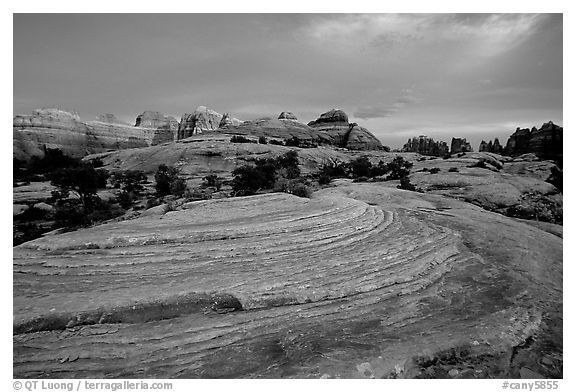 Sandstone swirls and Needles with last light, the Needles. Canyonlands National Park (black and white)