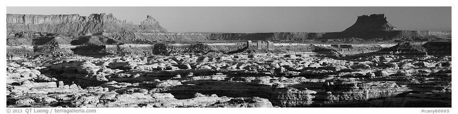 Maze canyons and Chocolate Drops from Standing Rock, early morning. Canyonlands National Park (black and white)