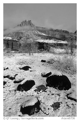 Castle Meadow and Castle, winter. Capitol Reef National Park (black and white)