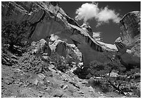 Hickman Bridge, 130 foot span. Capitol Reef National Park ( black and white)