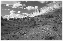 Wildflowers Waterpocket Fold, and clouds. Capitol Reef National Park, Utah, USA. (black and white)