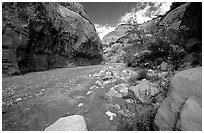 Wash in Capitol Gorge. Capitol Reef National Park ( black and white)