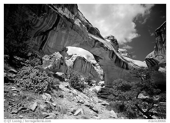 Hickman natural bridge from below. Capitol Reef National Park (black and white)