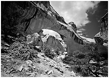Hickman natural bridge from below. Capitol Reef National Park ( black and white)