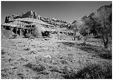 Castle Meadow and Castle, spring. Capitol Reef National Park, Utah, USA. (black and white)