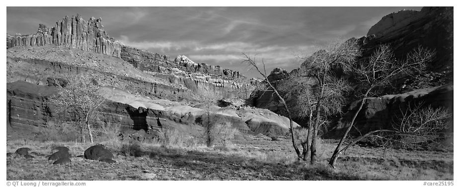 Castle Meadow and Castle, late autumn. Capitol Reef National Park (black and white)