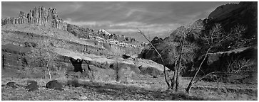 Castle Meadow and Castle, late autumn. Capitol Reef National Park (Panoramic black and white)