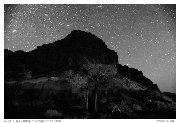 Trees and cliff by night. Capitol Reef National Park (black and white)