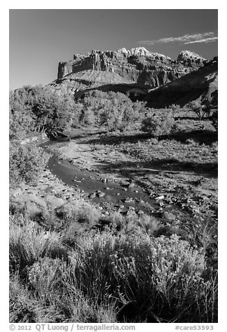 Stream and cliffs. Capitol Reef National Park (black and white)