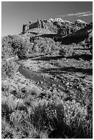 Stream and cliffs. Capitol Reef National Park, Utah, USA. (black and white)
