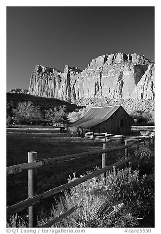 Fence, Old barn, horse and cliffs, Fruita. Capitol Reef National Park, Utah, USA.