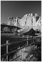 Fence, Old barn, horse and cliffs, Fruita. Capitol Reef National Park, Utah, USA. (black and white)