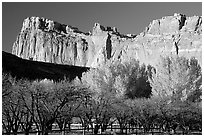 Historic orchard and cliffs. Capitol Reef National Park, Utah, USA. (black and white)