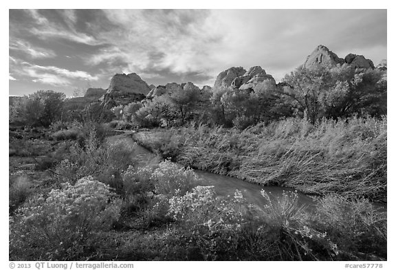 Fremont River Canyon in fall. Capitol Reef National Park (black and white)