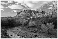 Sulphur Creek, trees in fall foliage, and Castle, Fruita. Capitol Reef National Park ( black and white)