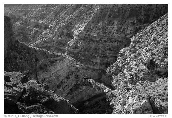 Sulfur Creek Canyon. Capitol Reef National Park (black and white)