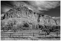 Historic orchard and cliff in autumn, Fruita. Capitol Reef National Park ( black and white)