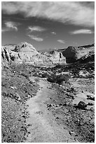 Primitive trail on natural slab. Capitol Reef National Park ( black and white)