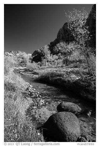 Basalt boulders, Pleasant Creek in the fall. Capitol Reef National Park (black and white)