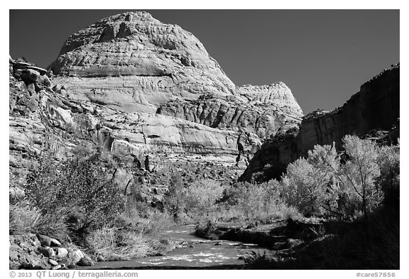 Capitol Dome in autumn. Capitol Reef National Park (black and white)
