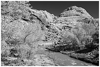 Fremont River and Capitol Dome in autumn. Capitol Reef National Park ( black and white)