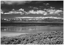 Sagebrush, lake, and Snake Range. Great Basin National Park, Nevada, USA. (black and white)