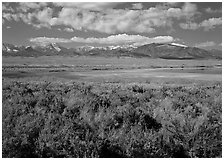 Snake Range raises above Sagebrush plain, seen from the East. Great Basin National Park ( black and white)