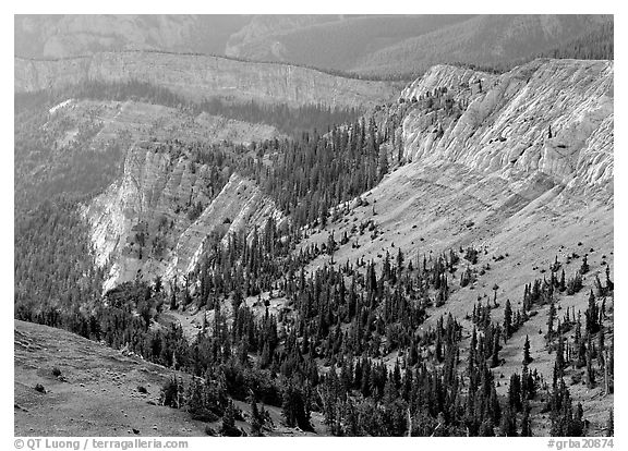 Limestone cliffs near Mt Washington. Great Basin National Park (black and white)