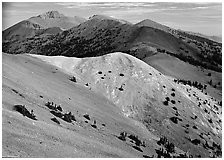 Wheeler Peak and Snake range seen from Mt Washington, morning. Great Basin National Park ( black and white)