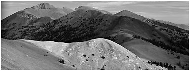 Snake Range ridge top. Great Basin National Park (Panoramic black and white)