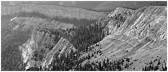 Limestone cliffs. Great Basin National Park (Panoramic black and white)