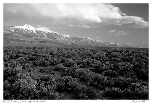 Snake Range and Wheeler Peak above sagebrush flats, from the West. Great Basin National Park (black and white)