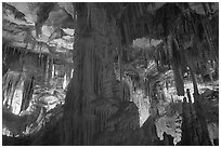 Tall columns in Lehman Cave. Great Basin National Park, Nevada, USA. (black and white)