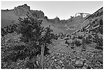 Rock bound cirque of Wheeler Peak, sunrise. Great Basin National Park, Nevada, USA. (black and white)