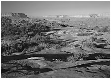 Rock slabs on  Esplanade, early morning. Grand Canyon National Park ( black and white)