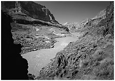 Colorado River with chocolate-colored waters in fall. Grand Canyon National Park ( black and white)