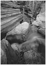 Entrance of Deer Creek Narrows. Grand Canyon National Park, Arizona, USA. (black and white)