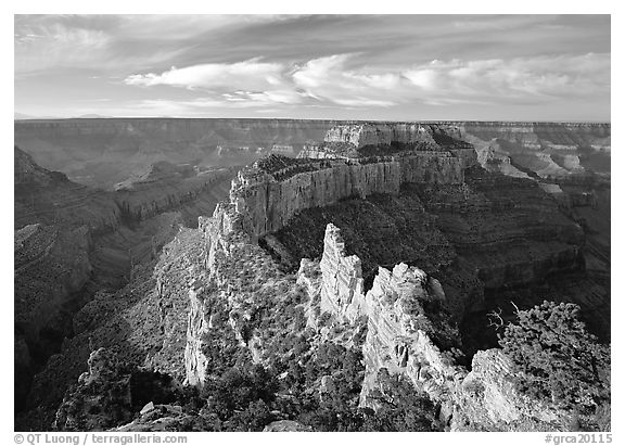 Wotans Throne seen from  North Rim, early morning. Grand Canyon National Park (black and white)