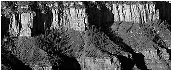 Canyon rim. Grand Canyon  National Park (Panoramic black and white)