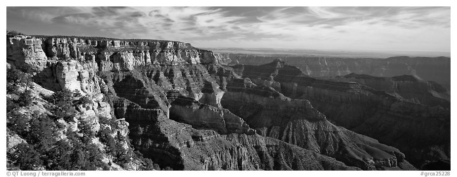 Canyon scenery from Cape Royal. Grand Canyon National Park (black and white)