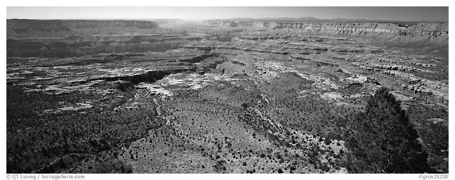 Plateau nested inside canyon. Grand Canyon National Park (black and white)