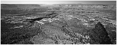 Plateau nested inside canyon. Grand Canyon National Park (Panoramic black and white)